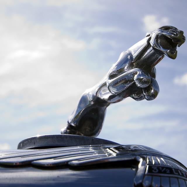 """""""Jaguar 3.5 litre"""" stock image"""
