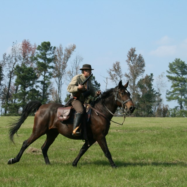 """Civil War Reenactment on Horseback"" stock image"