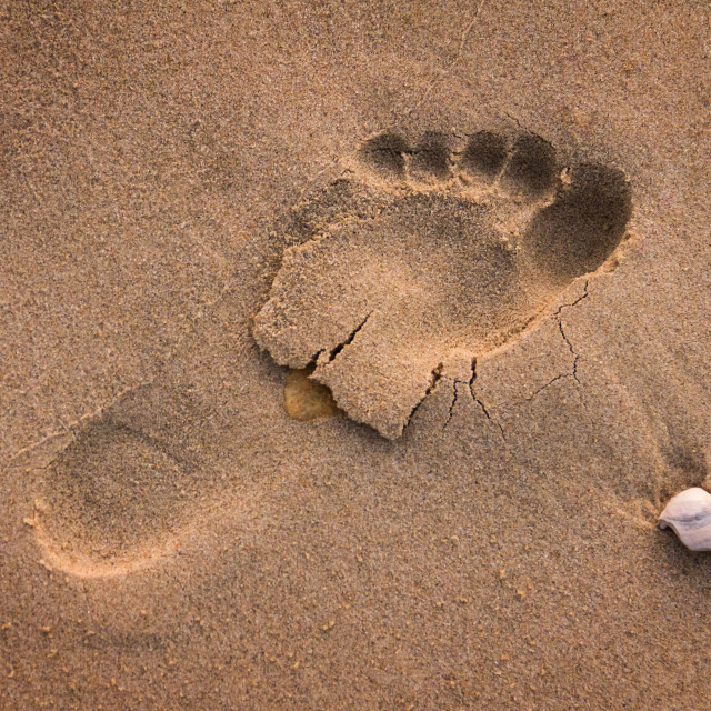 """Leave Only Footsteps"" stock image"