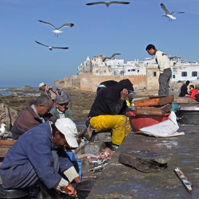 """Fishermen, Essaouira"" stock image"