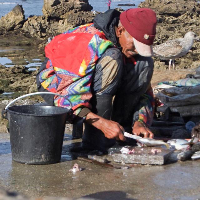 """""""Fisherman, Essaouira"""" stock image"""