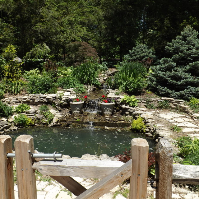 """garden"" stock image"