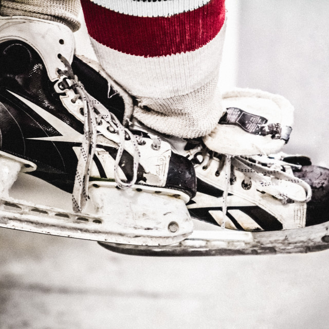 """""""Skates on the bench"""" stock image"""