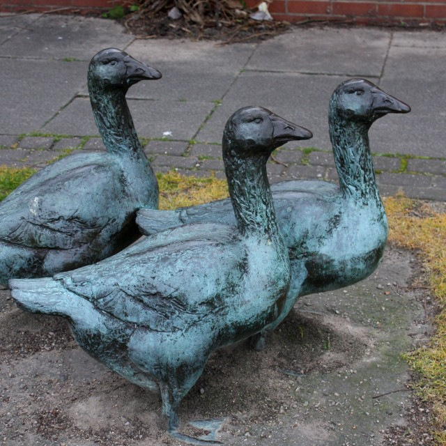 """""""Metal Ducks off to town"""" stock image"""