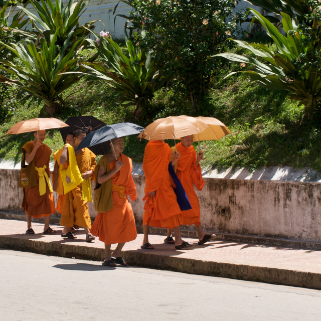 """Monks strolling in Luang Prabang, Laos"" stock image"
