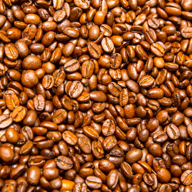 """Coffee Beans"" stock image"
