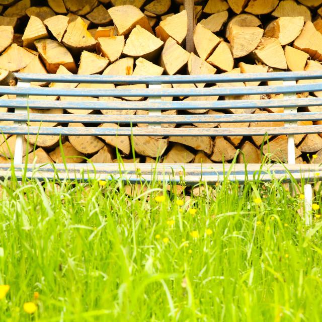 """Bench in a Garden"" stock image"