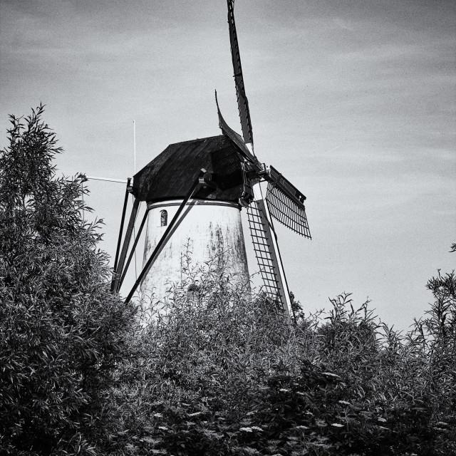 """""""Mill in Marienwaerdt"""" stock image"""