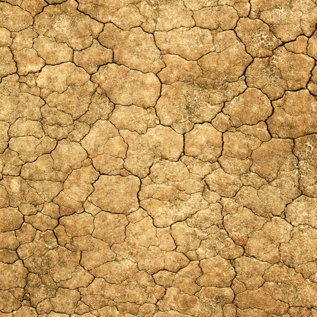 """""""Dry cracked mud natural abstract background."""" stock image"""