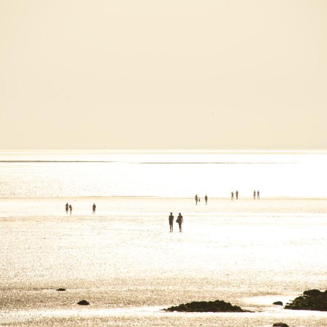 """""""Morecambe Bay, Lancashire"""" stock image"""