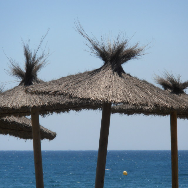 """Beach Parasols"" stock image"