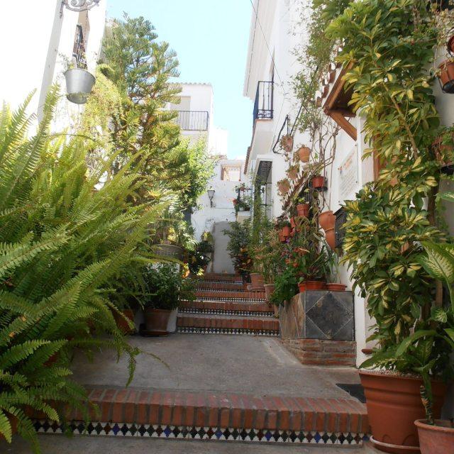 """Spanish Pot-lined Street"" stock image"