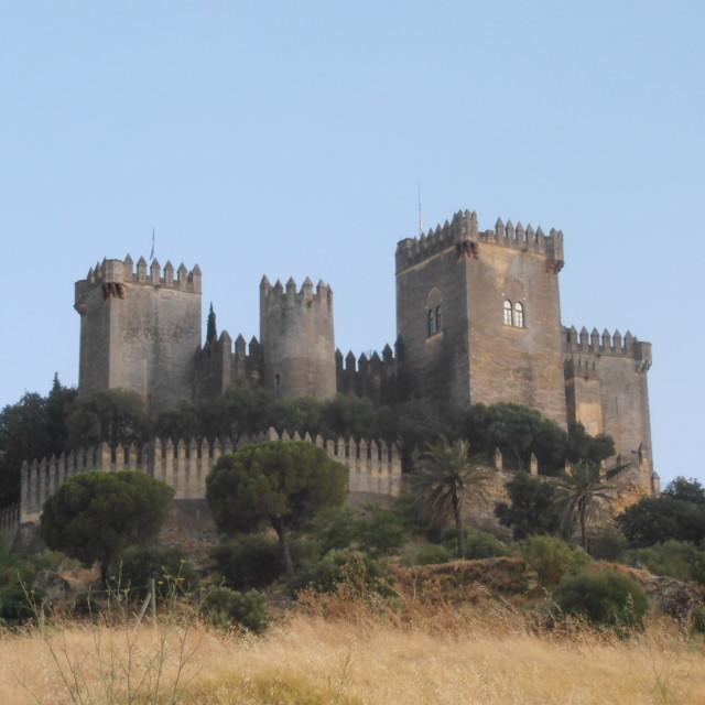 """""""Almodovar Castle Spain"""" stock image"""