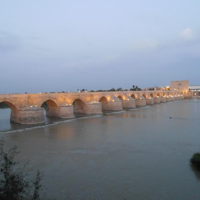 """Roman bridge, Cordoba Spain"" stock image"