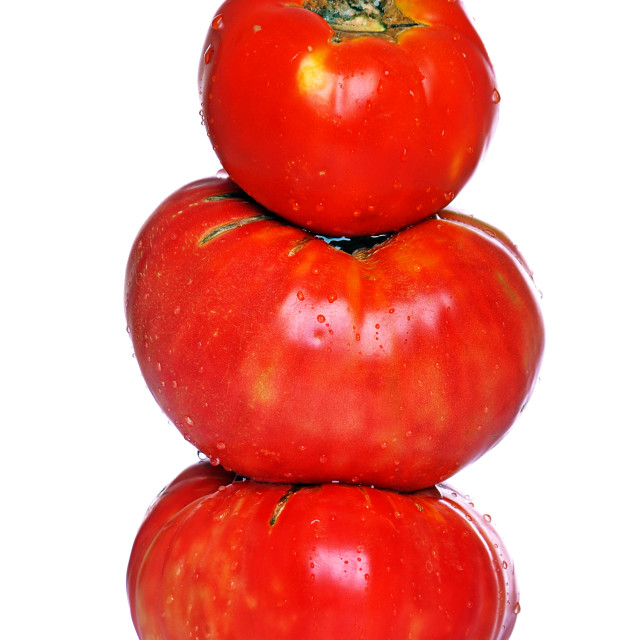 """Biologic tomatoes"" stock image"