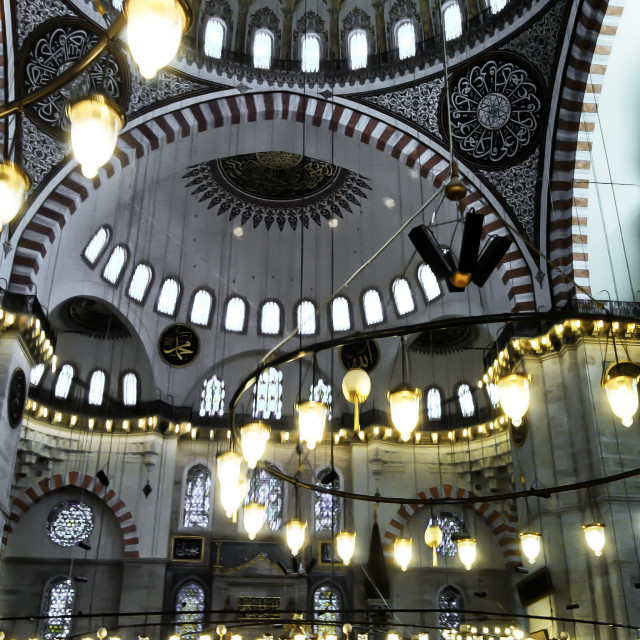 """An Istanbul Mosque"" stock image"