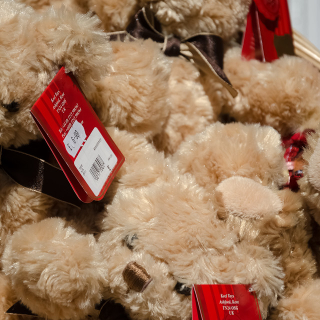 """""""Teddy Bears for sale"""" stock image"""