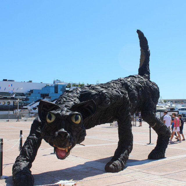 """Big cat of Cannes"" stock image"