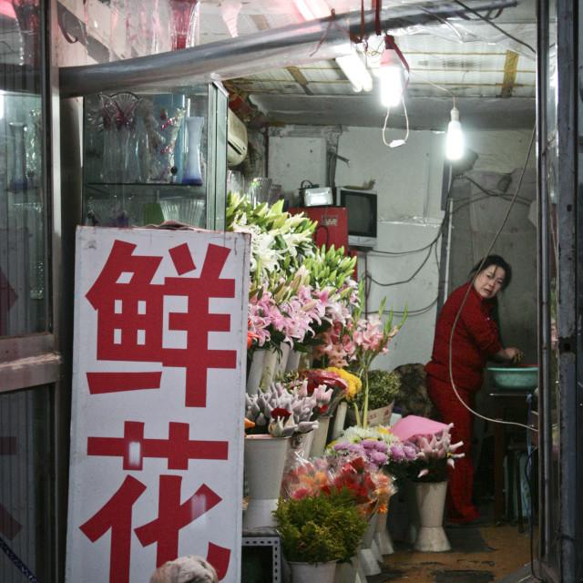 """""""Florist in Beijing"""" stock image"""