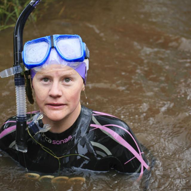 """Bog-snorkelling, Wales"" stock image"