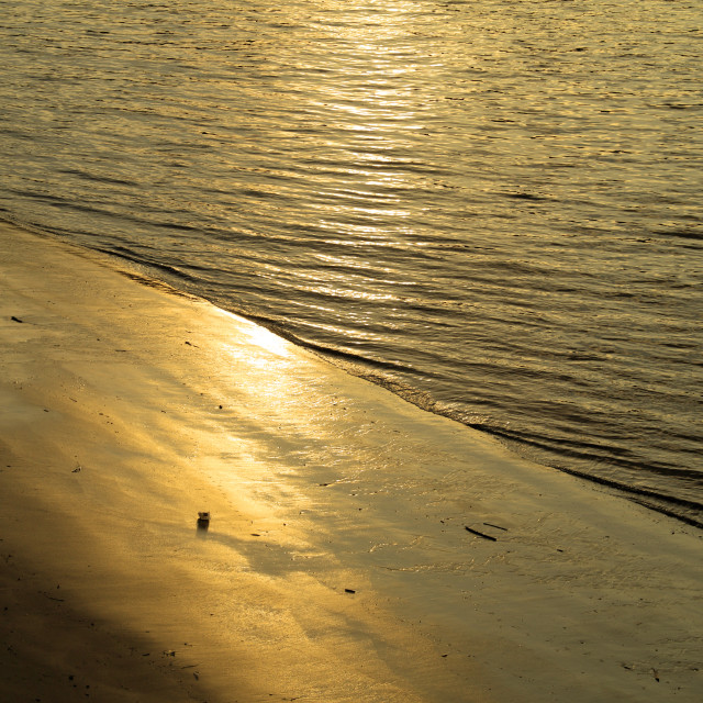 """Golden Riverbank"" stock image"