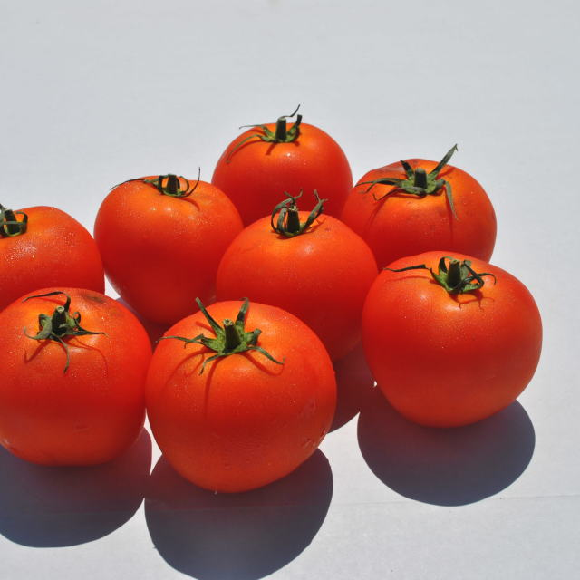 """red tomatoes 2"" stock image"