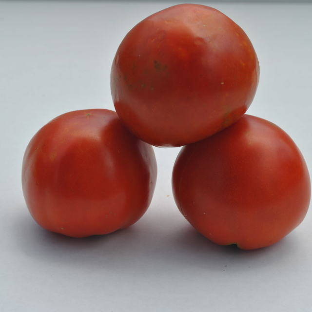"""red tomatoes 3"" stock image"
