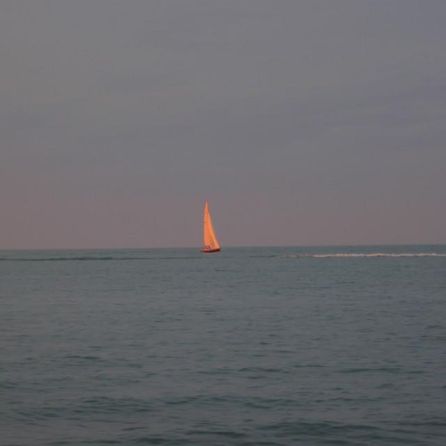 """""""Evening Sail"""" stock image"""