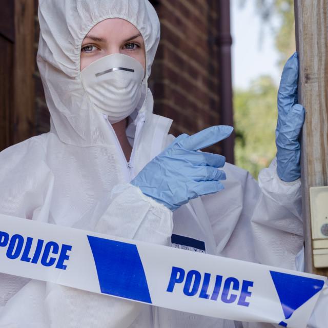 """Crime Scene Investigator"" stock image"
