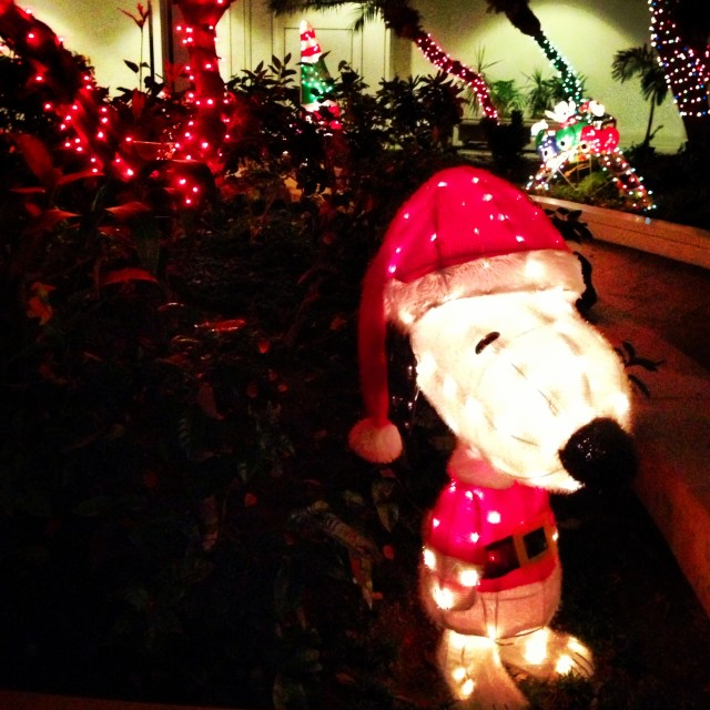 """""""Snoopy Claus, Hawaii-style"""" stock image"""