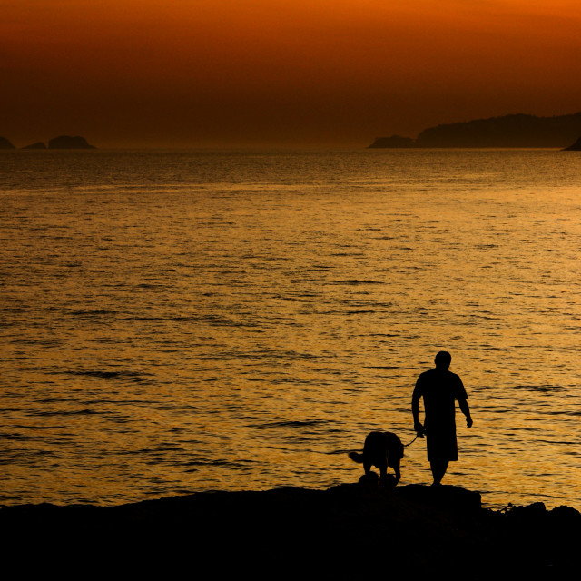 """Sunset dogwalking"" stock image"