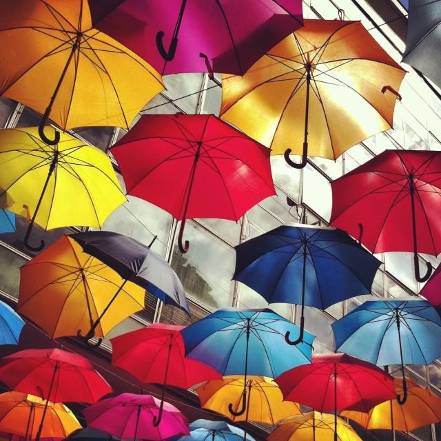 """Umbrella-Ella"" stock image"