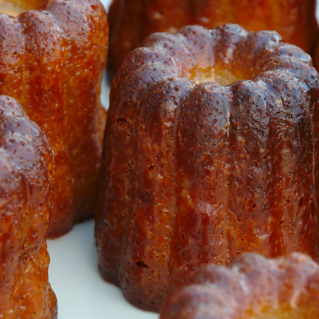 """Canelés Bordelais french traditional dessert"" stock image"