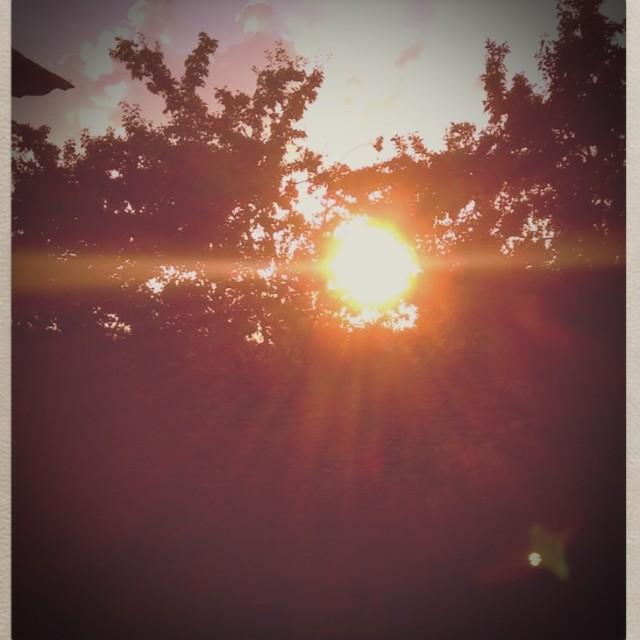 """""""Sunshine Burst"""" stock image"""