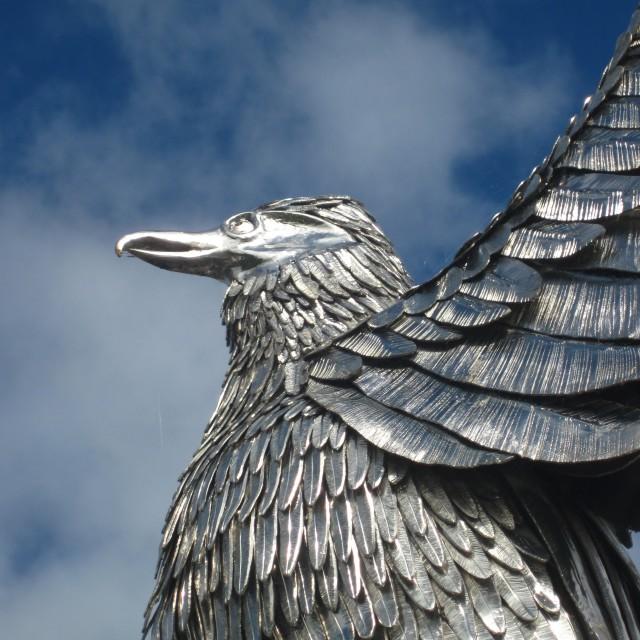 """Silver bird"" stock image"