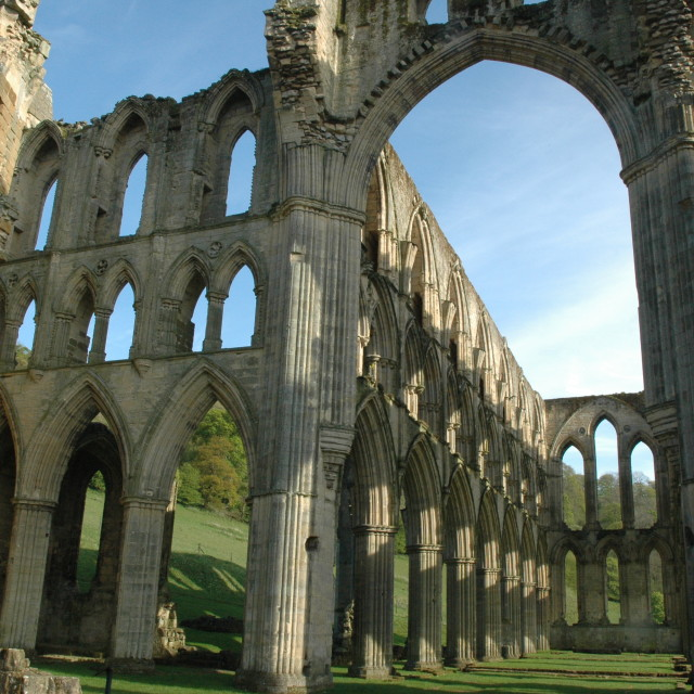 """Abbey Ruins"" stock image"