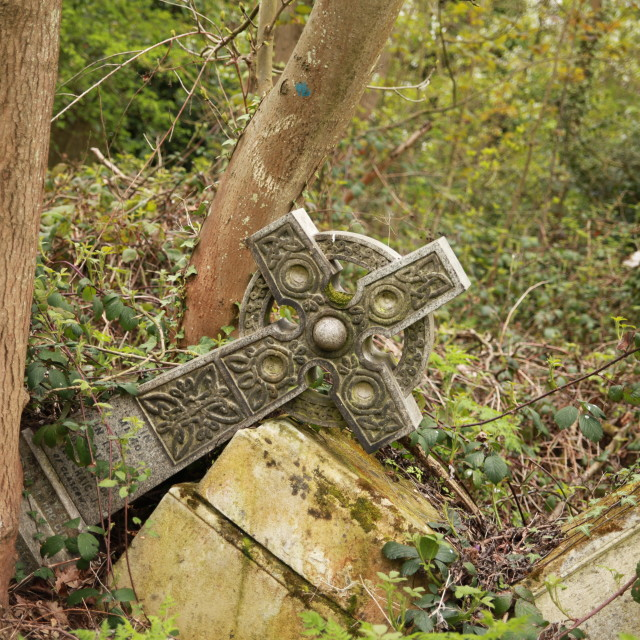 """Cemetery ruins"" stock image"