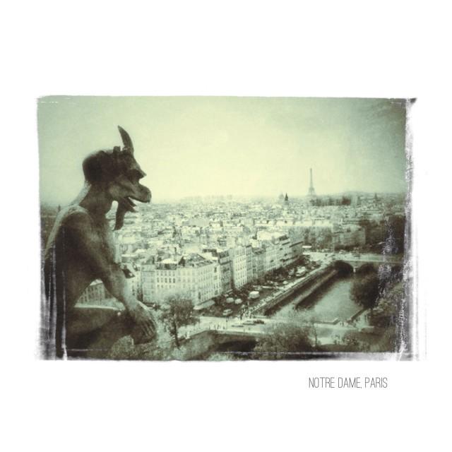 """""""Notre Dame, Paris"""" stock image"""