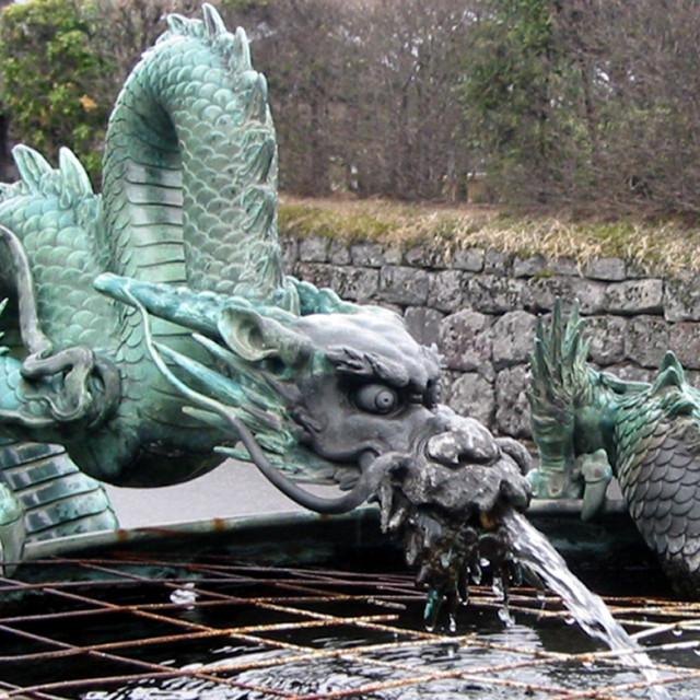 """Spewing Dragon"" stock image"
