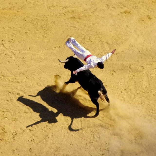 """Saltador"" stock image"