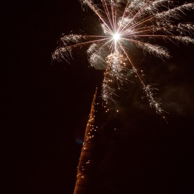"""""""Fireworks II"""" stock image"""