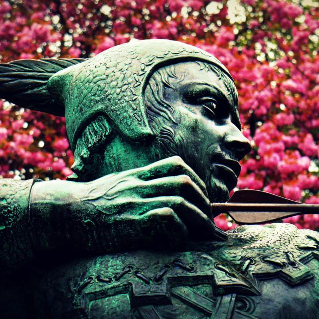 """Robin Hood"" stock image"