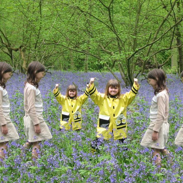 """""""Bluebell girls"""" stock image"""