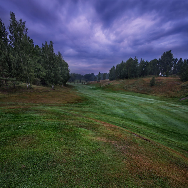 """""""Early morning in the golf course"""" stock image"""