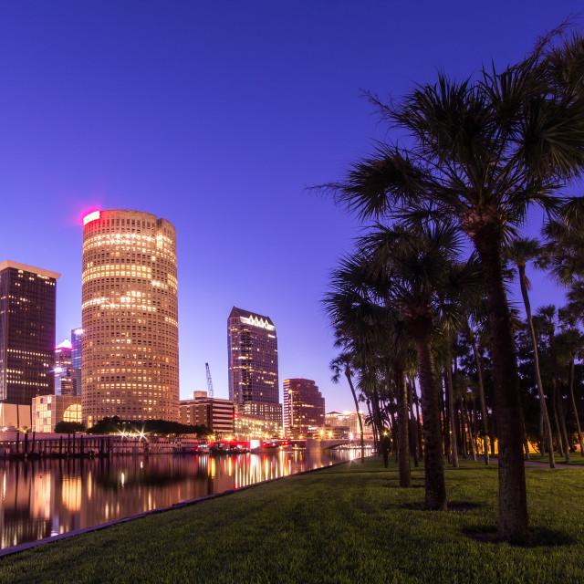 """""""Tampa Morning"""" stock image"""