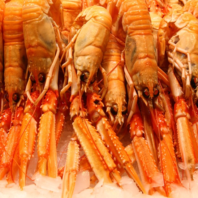 """""""Crayfish for sale"""" stock image"""