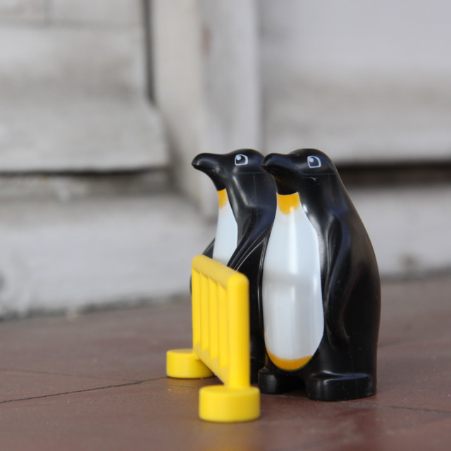 """Lego penguins"" stock image"