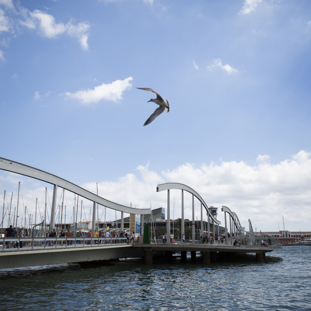 """Barcelona Port with Seagull"" stock image"