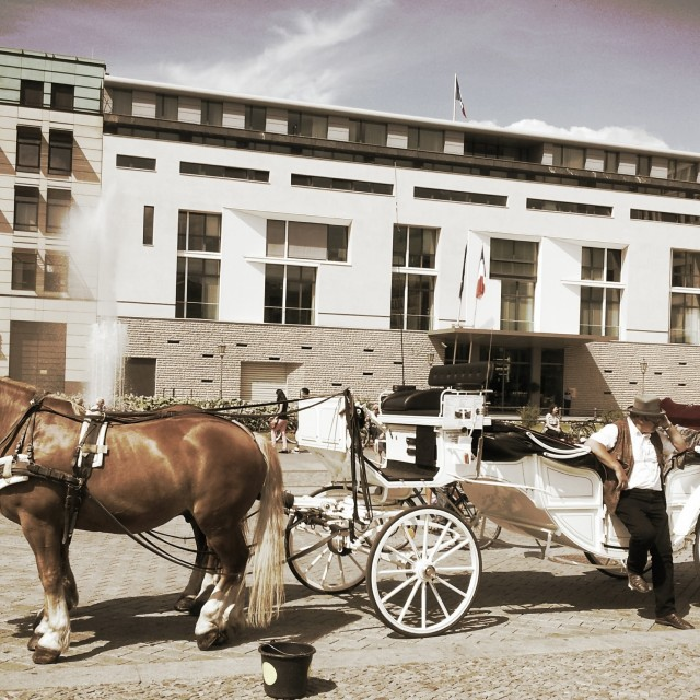 """""""Horse and cart in Berlin"""" stock image"""