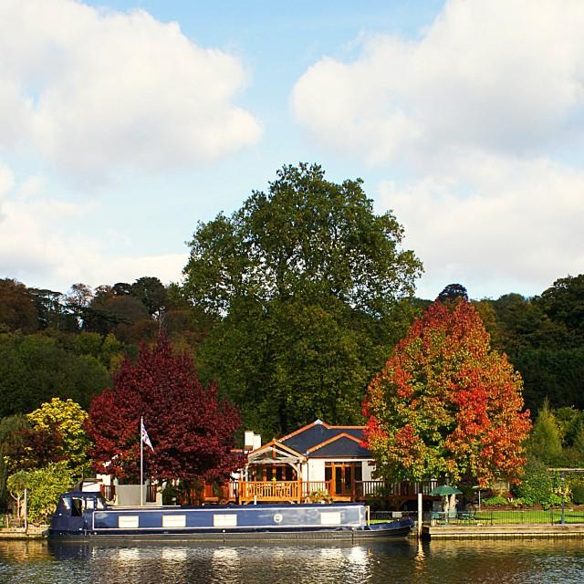 """""""Seasons - Autumn"""" stock image"""
